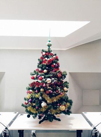 Christmas Tree From Wrocław